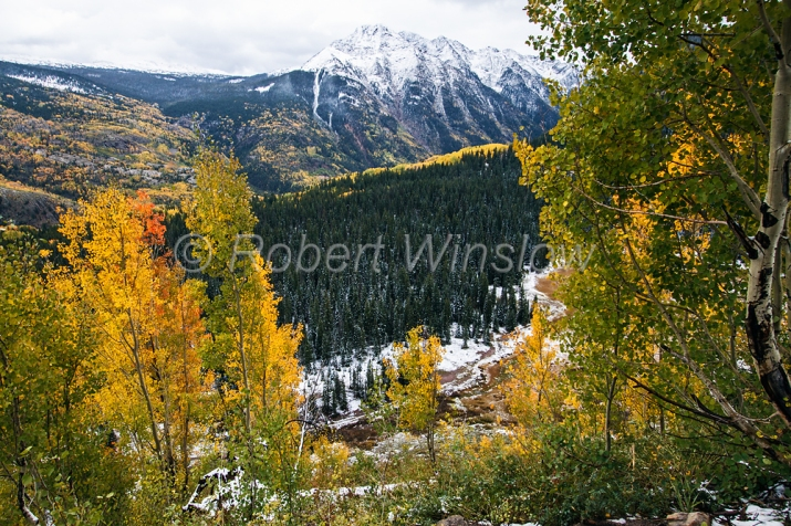 San Juan Mountains Fall Colors 6752W1WM