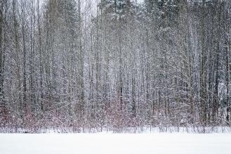 snowstorm 3W15